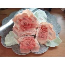 Fustella M Rosa bianca