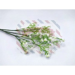 Rametto con fiorellini bianchi