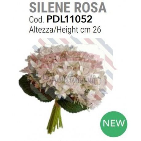 Silene colore rosa alt. 26 cm